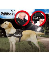 Best Quailty Lovabel Dog Safety Non Pull Padded Dog Walking Harness All Sizes