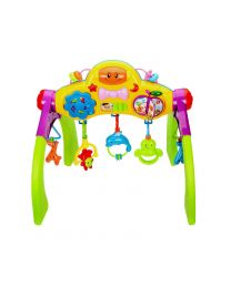 G4RCE Multifunctional Baby Toddler Infant Gym Activity Centre Lights & Sounds